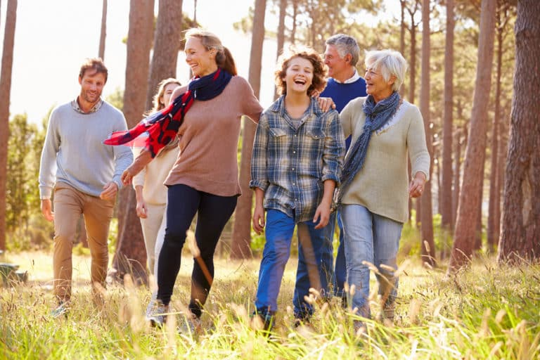 Clearing up the Wreckage of Addiction: Family Counseling