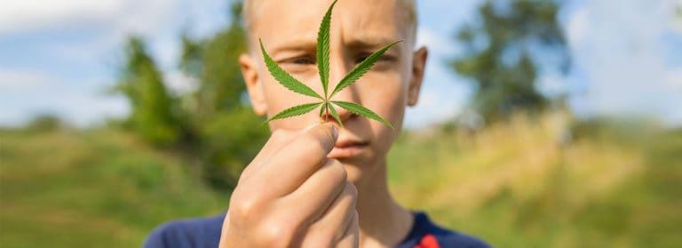 How Marijuana Affects the Teenage Brain