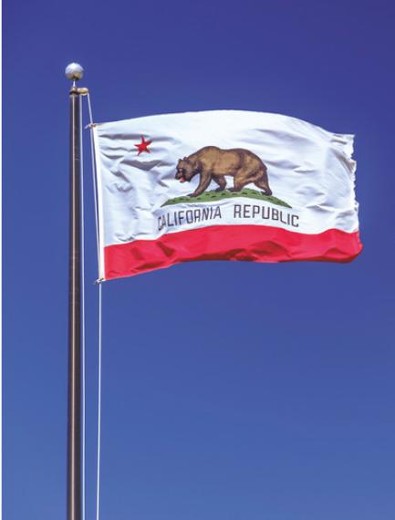 """""""California Sober"""": A Recovery Fallacy"""
